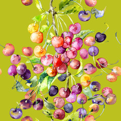 Ripe, juicy, summer cherry and berry pattern. Watercolor. Illustration