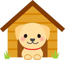 犬小屋に入っているラブラドールレトリバー