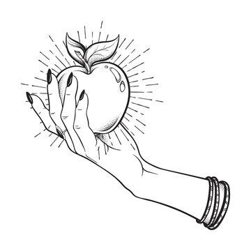 Apple in female hand isolated hand drawn line art and dot work vector illustration. Boho sticker, print or blackwork flash tattoo design.
