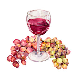 Glass with red wine, grape. Watercolour