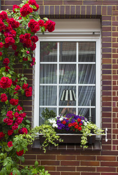 brick wall with window and flower boxes with flowering plants