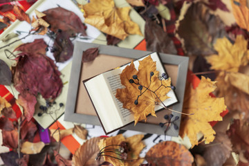 Open book in wooden frame close-up, top view, sunny fall day, autumn background, colorful leaves, romantic mood. Concept of back to school, education