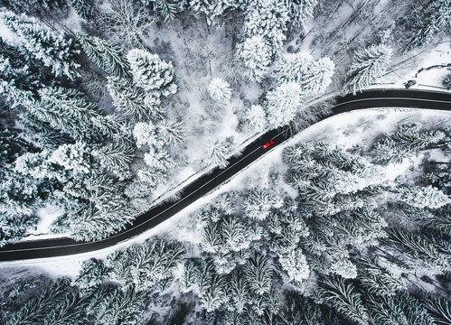 Car on road in winter trough a forest covered with snow