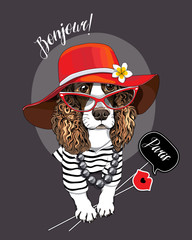 Spaniel Dog in a striped cardigan, in a red broad-brimmed hat and with a photo booth props. Vector illustration.