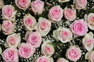 Rosa Rosen im Trauerkranz