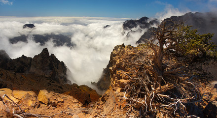 Landscape in the volcanic crater Caldera de Taburiente, Island of La Palma, Canary Islands, Spain