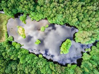 Landschaft - Luftbild, kleiner See in einem Wald aus der Vogelperspektive