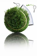 Grass tennis ball concept
