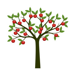 Green Tree and red apple fruits. Vector Illustration.