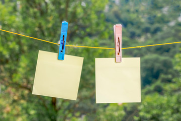 Empty paper stickers suspended on clothespin, on a green background