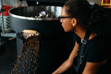 Young entrepreneur sitting at roasting machine, controlling a prepared roasting beans