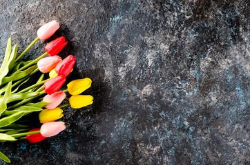 tulips on Dark concrete  background