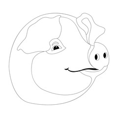 pig head  coloring vector illustration line drawing  profile