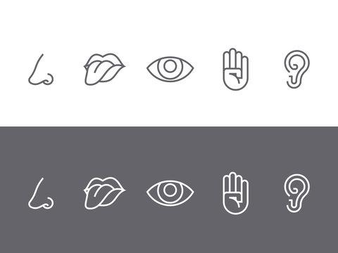 Set of symbols of the five senses