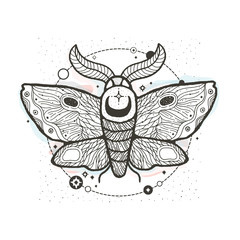 Sketch graphic illustration Beautiful Moth with mystic and occult hand drawn symbols. Vector illustration. Halloween and esoteric concept. Vintage Hands with Old Fashion Tattoos.
