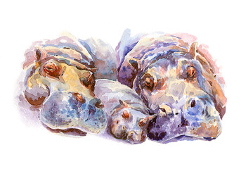 Family hippos on vacation. Watercolor.