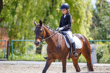 Teenage girl riding bay horse performing dressage test on equestrian competition