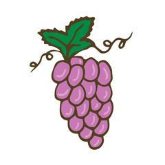 Grape Vector icon. Hand drawn print. Sticker printed design.
