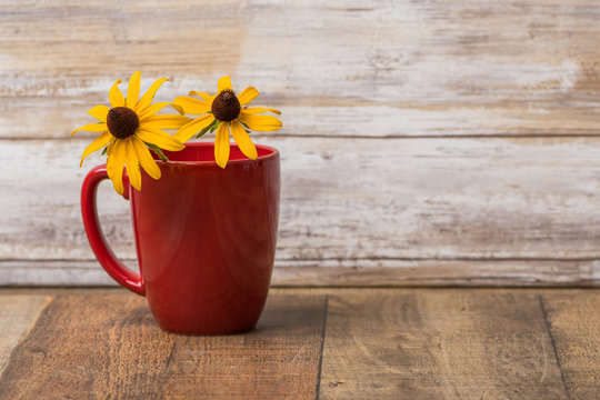 Coffee cup with black eyed susan flowers