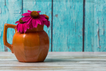 Cone flowers or echinacea flowers in a rustic pitcher