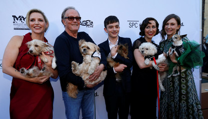 """Director Feste and cast members Fonda, MacDougall, Schaal and Farmiga hold mutts as they pose at the premiere for the movie """"Boundaries"""" in Los Angeles"""