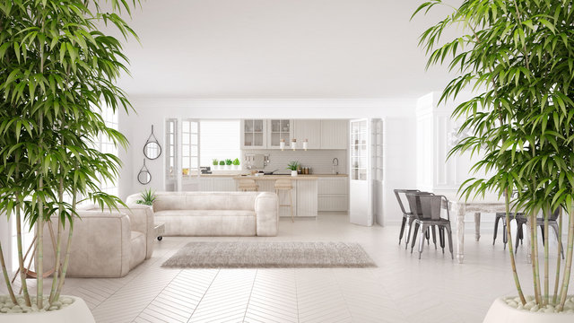 Zen interior with potted bamboo plant, natural interior design concept, minimalist white living and kitchen, scandinavian classic architecture