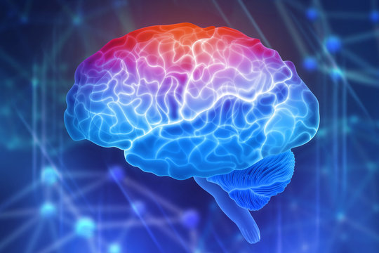 Human brain on a blue background. Active parts of the brain. Creating a computer mind. 3D illustration of the application of innovation in science