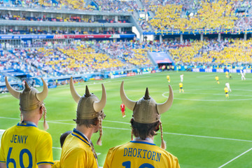 Fans of the Swedish national team cheer for their team.
