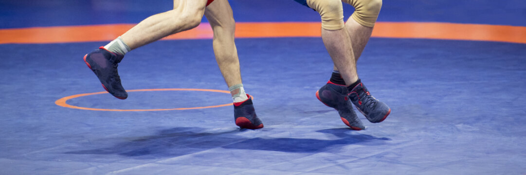 Two strong wrestlers legs  on a blue wrestling carpet in the gym