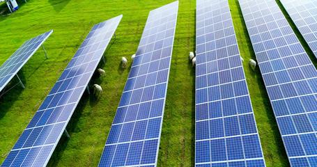 champs de panneaux solaire dans une ferme solaire