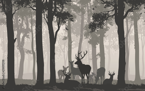 Wall mural Natural background with the silhouette of a forest with a herd of deer. Seamless horizontal background. Vector illustration