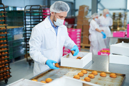 Confectionery factory worker in white coat collecting freshly baked pastry from tray and putting it into paper box.