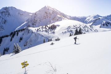 Skitourengeher in den Alpen