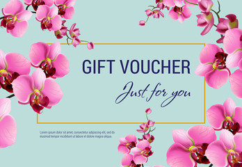 Just for you, gift certificate design with pink flowers and frame on light blue background. Text can be used for coupons, vouchers, flyers