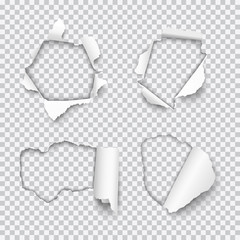 Vector set of various holes torn in paper with rolled edges isolated on transparent background
