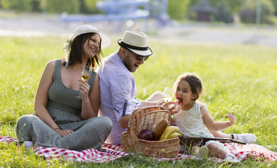 a family with a child enjoys a picnic