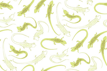 The green lizard. An ordinary steppe lizard with a pattern on its back. Reptiles, graphic.