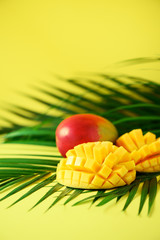 Exotic mango fruit over tropical green palm leaves on yellow background. Copy space. Pop art...