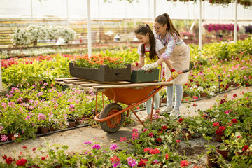 Young  playful florist enjoying work and ride the cart in the greenhouse