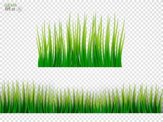 Grass Borders Set. On a transparent background. Vector Illustration