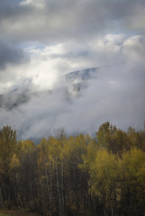 Thick clouds covering hills and autumn forest