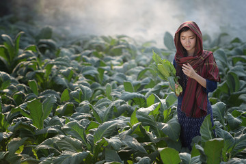 Vietnamese girl Asia is walking home with tobacco