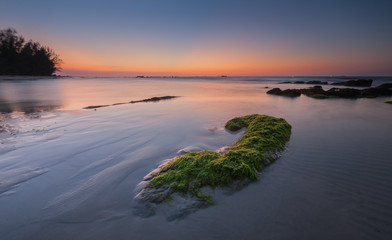 Long Expose effect at the beach with rocks covered by green moss.