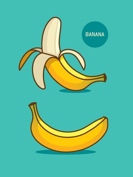 Two bananas illustration. Banana icon.