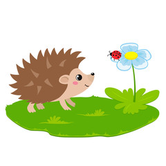 Vector illustration of cute hedgehog and flower with ladybug