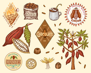 Cocoa beans and hot chocolate logos. modern vintage badges for the shop menu. Seeds of fruit on the plantation. calligraphy style for frames, labels. farm products. engraved hand drawn in old sketch.