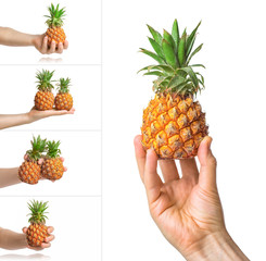Baby pineapple in the human male hand, isolated on white background. Collage of set photos.