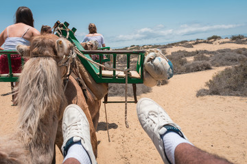 Foto en primera persona encima de una silla galopando un camello