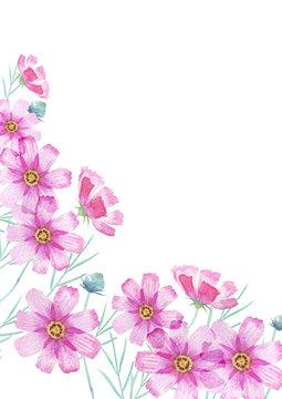 秋桜 コスモスの花 背景 水彩 イラスト