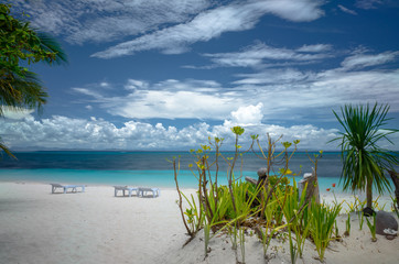Sunbeds and Tropical Plants on White Sand Island Beach - Bohol, Philippines